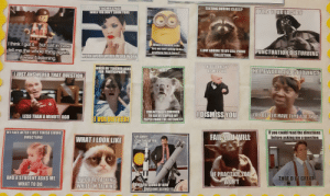 """So my school has a bunch of dead memes related to school, and yeaaa: TEACHER'S FACE  WHEN YOU DONT SHOW YOUR  TEXTING DURING CLASS?  I FIND YOUR LACK OF  I think I got it... but just in case  tell me the whole thing again.  Iwasn't listening.  When a student asks  """"Are we ever going to do  anything fun in here  PUNCTUATION DISTURBINGE  I LOVE ADDING TO MY CELL PHONE  COLLECTION.  WORK WORK WORK WORK WORK  Spinidtans  cmegenerator.net  THE BELL DOESNT  DISMISS YOU  WHEN MY TEACHER ASKS  FOR PARTICIPANTS.  HOMEWORK AND STUDYING?  WAIT  JUST ANSWERED THAT QUESTION  YOU ACTUALLY CHECKED  TO SEE IF I COPIED MY  PAPER FROM THE INTERNET?  IDISMISS YOU  YOU BETTER HAVE TIME FOR THAT.  LESS THAN A MINUTE AGO  VOLONTEER!  MY FACE AFTER I JUST FINISH GIVING  DIRECTIONS  If you could read the directions  before asking me a question  FAIL YOU WILL  IM SORRY.  ICANT HEAR YOU  WHAT I LOOK LIKE  IF PRACTICE YOU  WON'T  AND A STUDENT ASKS ME  WHAT TO DO.  THAT D BE GREAT  IF YOU'RE TALKING  WHILE I'M TALKING  OVER THE SOUND OF HOW  AWESOME SCIENCE IS  unerator.net So my school has a bunch of dead memes related to school, and yeaaa"""