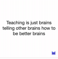 Brains, Memes, and How To: Teaching is just brains  telling other brains how to  be better brains  MEMES showerthoughts — link in bio