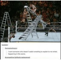 "Tumblr, Wrestling, and Blog: teadalek  I want someone who doesn't watch wrestling to explain to me whats  happening in this scene.  #Com petitive lightbulb replacement <p><a href=""http://memehumor.net/post/166324826807/competitive-light-bulb-replacement"" class=""tumblr_blog"">memehumor</a>:</p>  <blockquote><p>Competitive light bulb replacement.</p></blockquote>"