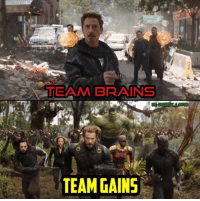 Brains, Memes, and 🤖: TEAM BRAINS  TEAM GAINS What side are you on?  (Andrew Gifford)