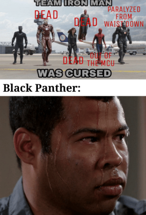 Wakanda Forever by scott_doge_wow MORE MEMES: TEAM IRON MAN  PARALYZED  FROM  DAU WAISDOWN  PEAD  DEAU THE MCU  WAS CURSED  Black Panther: Wakanda Forever by scott_doge_wow MORE MEMES