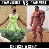 I'ma have to go wit Team Veggie on this one nohomo 😂 Follow @humorkingdom (ME) For More Lit Memes & Videos 🔥: TEAM VEGGIES VS TEAM MEAT  CHOOSE WISELY I'ma have to go wit Team Veggie on this one nohomo 😂 Follow @humorkingdom (ME) For More Lit Memes & Videos 🔥