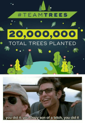 We won Mr Stark!!:  #TEAMTREES  20,000,000  TOTAL TREES PLANTED  you did it. you crazy son of a bitch, you did it We won Mr Stark!!