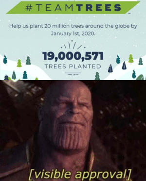 We're almost there:  #TEAMTREES  SM  Help us plant 20 million trees around the globe by  January 1st, 2020.  19,000,571  TREES PLANTED  [visible approval] We're almost there