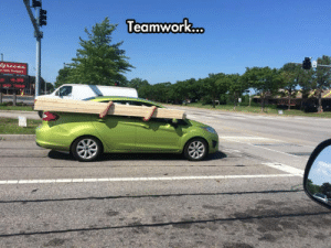 Tumblr, Work, and Blog: Teamwork  .. srsfunny:  These Guys Know How To Work Together