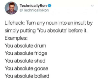 Fridge, Examples, and Goose: TechnicallyRon  @TechnicallyRon  Lifehack: Turn any noun into an insult by  simply putting You absolute' before it.  Examples:  You absolute drum  You absolute fridge  You absolute shed  You absolute goose  You absolute bollard