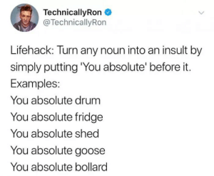 """Technicallyron: TechnicallyRon  @TechnicallyRon  Lifehack: Turn any noun into an insult by  simply putting """"You absolute' before it.  Examples:  You absolute drum  You absolute fridge  You absolute shed  You absolute goose  You absolute bollard"""