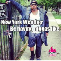 """New York, Ted, and Http: TED  New York Weather  redhot <p><strong>New York weather</strong></p><p><a href=""""http://www.ghettoredhot.com/new-york-weather/"""">http://www.ghettoredhot.com/new-york-weather/</a></p>"""