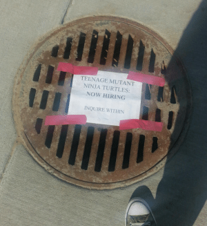 veggieblt:   So I was walking around campus and I found this on the sewer drain outside my dorm. : TEENAGE MUTANT  NINJA TURTLES:  NOW HIRING  INQUIRE WITHIN veggieblt:   So I was walking around campus and I found this on the sewer drain outside my dorm.