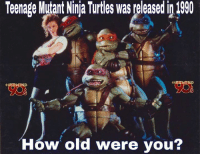 From The Nostalgic 90s: Teenage Mutant Ninja Turtles was leased  How old were you? From The Nostalgic 90s