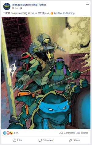 Pure Fire: Teenage Mutant Ninja Turtles  ZMN  18 hrs 0  by IDW Publishing  TMNT comics coming in hot in 2020! pure  3.1K  256 Comments 385 Shares  O Like  Comment  Share Pure Fire