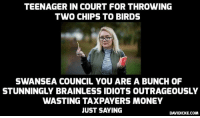 Memes, Outrageous, and Idiot: TEENAGER IN COURT FOR THROWING  TWO CHIPS TO BIRDS  SWANSEA COUNCIL YOU ARE A BUNCH OF  STUNNINGLY BRAINLESS IDIOTS OUTRAGEOUSLY  WASTING TAXPAYERS MONEY  JUST SAYING  DAVIDICKE.COM Teenager to stand trial for feeding chip to pigeon after refusing to pay fine http://bit.ly/2fY3i4M #PoliceState