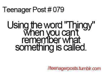 Memes, 🤖, and The Words: Teenager Post #079  Using the word Thingy  When you can't  remember What  Something is called  lteenagerposts.tumblr.com