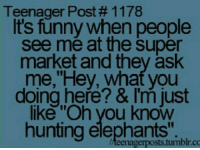 """teenager post: Teenager Post # 1 1 78  t's funny when people  see me at the super  market and they ask  me,""""Hey, what you  doing here? & I'm just  like """"Oh vyou know  hunting elephants"""".  teenagerposts.tumblr.co"""