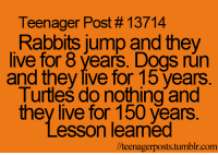 teenager post: Teenager Post 13714  Rabbits jump and they  live for 8 Vears. Dogs run  and they live for 15 years  Turtles do nothing and  they live for 150 years  esson leamed  //teenagerposts tumblr r.com