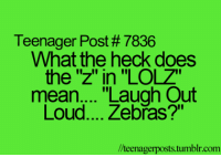 "Memes, Tumblr, and Mean: Teenager Post # 7836  What the heck does  the 'z"" in ""LOLZ""  mean.... ""Laugh Out  Loud... Zebřas?""  //teenagerposts.tumblr.com"