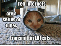 Teh Internets  are a  seriesof  tubes  transmittin LOLcats