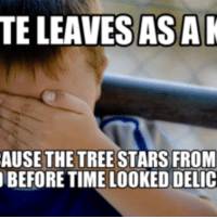 Tree Star,  Tree Stars, and Riven Reddit: TELEAVESASAK  AUSE THE TREE STARS FROM  BEFORE TIME LOOKED DELIC