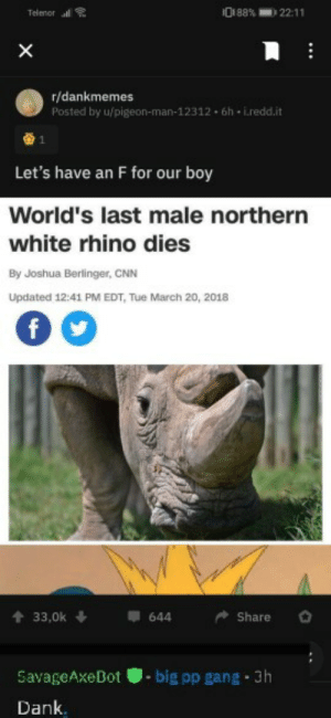cnn.com, Dank, and Gang: Telenor l  ini88%  22:11  X  r/dankmemes  Posted by u/pigeon-man-12312 6h-i.redd.it  Let's have an F for our boy  World's last male northern  white rhino dies  By Joshua Berlinger, CNN  Updated 12:41 PM EDT, Tue March 20, 2018  f  33,0k  644  Share  big pp gang 3h  SavageAxeDot  Dank Bot more like New blue shirt kid