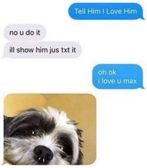 Max is cute: Tell Him I Love Him  no u do it  ill show him jus txt it  oh ok  i love u max Max is cute