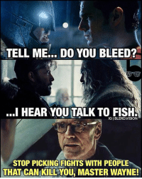 Memes, 🤖, and Cyborg: TELL ME DO YOU BLEED?  ..I HEAR YOU TALK TO FISHS  IGIBLERDVISION  STOP PICKING FIGHTS WITH PEOPLE  THAT CAN KILLYOU, MASTER WAYNE! 😂😂👌! dc dccomics dceu dcu dcrebirth dcnation dcextendeduniverse batman superman manofsteel thedarkknight wonderwoman justiceleague cyborg aquaman martianmanhunter greenlantern theflash greenarrow suicidesquad thejoker harleyquinn comics injusticegodsamongus