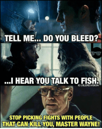 Vision, Fish, and Masters: TELL ME... DO YOU BLEED?  I HEAR YOU TALK TO FISH  IGIBLERD,VISION  STOP PICKING FIGHTS WITH PEOPLE  THAT CAN KILL YOU, MASTER WAYNE! 😂😂 looks like santa in the background of the middle one ~ Poison Ivy #GothamCityMemes