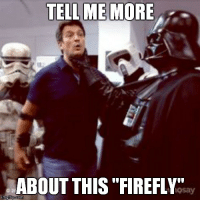 """Tell Me More Meme: TELL ME MORE  ABOUT THIS FIREFLY""""  nngflip Coma"""