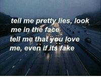 Its Fake: tell me pretty lies, look  me in the face.  tell me that yöu love  me, even if.its fake
