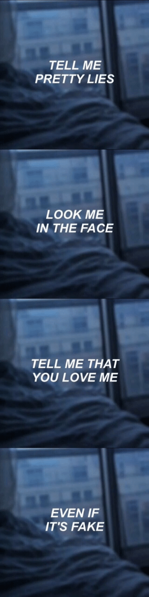 Its Fake: TELL ME  PRETTY LIES   LOOK ME  IN THE FACE   TELL ME THAT  YOU LOVE ME   EVEN IF  IT'S FAKE