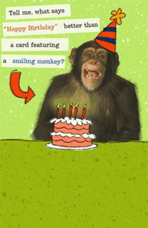 """Happy Birthday Baby Monkeys 