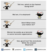 Be Like, Meme, and Memes: Tell me, which is the fastest  flying bird?  Ma'am, it's elephant!  Idiot! What does  your father do?  Ma'am he works as a terrorist  in some terrorist organization  Very good boy! Yes everybody  Write the answer  Elephant!  K @DESIFUN 증@DESIFUN  @DESIFUNDESIFUN.COM Twitter: BLB247 Snapchat : BELIKEBRO.COM belikebro sarcasm meme Follow @be.like.bro