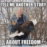 Memes, Cent, and Freedom: TELL MEANOTHERSTORY  TOR CENT  ABOUT FREEDOM Tell me one more please