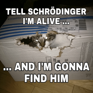 Tell schrödinger I'm alive… And I'm gonna find him by vegatripy FOLLOW 4 MORE MEMES.: TELL SCHRÖDINGER  VItality  I'M ALIVE  Versatiie Paper Good for Most Jobs  DOCK  oo0007  26309-00  002  BLK  shaun (Uo  HOo 7000  Q53  108  015  02  14  XEROX MULT PURP 4200 PAPER LTR  1 CT1O PK  R2047  PZ  15  1986Panda symbol WWE-Wod W  .AND I'M GONNA  FIND HIM  Canpdn  licersee for eta Poe  Bus droits téservés. XEROX  rox Corporation oux Et  Qes  XEROX d  ut isées sous licence de Xerox Coror De u dso  t pt 1 doutre  orts pour medias spécialisés de Xera oux Etetsl  deposées de Xe  OwwERealstered Tredemart Panda Symbol1986 WWF.  und for Nature (alsok  OWWR is a WWF Rgistered Trademart  01986 WNF-Fonds tondial pour la nature symbole du panda. Marque d  M  XET Tell schrödinger I'm alive… And I'm gonna find him by vegatripy FOLLOW 4 MORE MEMES.