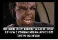 Life, Love, and Memes: TELL SOMEONE YOU LOVE THEM TODAY, BECAUSE LIFE IS SHORT.  BUT SCREAM IT AT THEM IN KLINGON BECAUSE LIFE IS ALSO  TERRIFYING AND CONFUSING