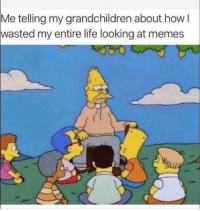 Funny, Life, and Memes: telling my grandchildren about how l  wasted my entire life looking at memes  Me