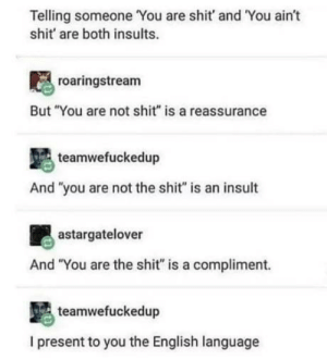 "I don't give a sh!t: Telling someone You are shit' and 'You aint  shit are both insults.  roaringstream  But ""You are not shit"" is a reassurance  teamwefuckedup  And ""you are not the shit"" is an insult  astargatelover  And ""You are the shit"" is a compliment.  teamwefuckedup  I present to you the English language I don't give a sh!t"