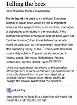 "I cannot believe this is real: Telling the bees  From Wikipedia, the free encyclopedia  The telling of the bees is a traditional European  custom, in which bees would be told of important  events in their keeper's lives, such as births, marriages,  or departures and returns in the household. If the  custom was omitted or forgotten and the bees were not  ""put into mourning"" then it was believed a penalty  would be paid, such as the bees might leave their hive,  stop producing honey, or die.1 The custom has been  most widely noted in England but also recorded in  Ireland, Wales, Germany, Netherlands, France,  Switzerland, and the United States,121314S6  Little is known about the origins of this practice,  although there is some unfounded speculation that it  is loosely derived from or perhaps inspired by  ancient Aegean notions about bees' ability to  bridge the natural world with the afterlife.  oakydokey  me shoving my head into a beehive: yall would not  fuckin BELIEVE the day I've had I cannot believe this is real"