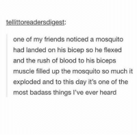 Ass, Bad, and Friends: tellittoreadersdigest:  one of my friends noticed a mosquito  had landed on his bicep so he flexed  and the rush of blood to his biceps  muscle filled up the mosquito so much it  exploded and to this day it's one of the  most badass things l've ever heard Bad. Ass.