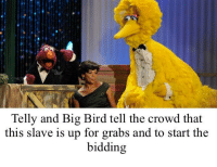 Big Bird: Telly and Big Bird tell the crowd that  this slave is up for grabs and to start the  bidding