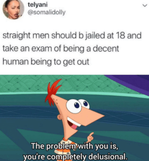 Dank, Memes, and Target: telyani  @somalidolly  straight men should b jailed at 18 and  take an exam of being a decent  human being to get out  The problem with you is,  you're completely delusional. I am an advocate for true gender equality by ArashiXD MORE MEMES