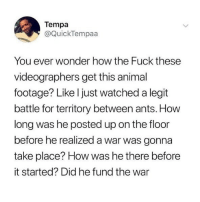 Ironic, Animal, and Fuck: Tempa  @QuickTempaa  You ever wonder how the Fuck these  videographers get this animal  footage? Like l just watched a legit  battle for territory between ants. How  long was he posted up on the floor  before he realized a war was gonna  take place? How was he there before  it started? Did he fund the war 🤣