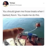 Memes, Good, and 🤖: Tempa  @QuickTempaa  You should given me those treats when l  barked, Kevin. You made me do this.  0:04 GOOD BOI!!!!