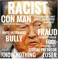 Memes, Predator, and 🤖: TEMPERAMENTAUy UNFIT  N MAN  SERIALADULJERER  MISOG NIST  ARCISSISTIC PERSONALITY DISORDER  WHITE NATIONALIST  AUTHORITARIAN  FOOL  PATHOLOGICAL LIAR  SEXUAL PREDATOR  HOSTILE POLITICS  NOTHING LOSER This pre-election meme remains true.    via Hostile Politics