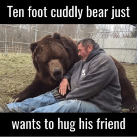 Dank, 🤖, and Foot: Ten foot cuddly bear just  wants to hug his friend I need a Jimbo the bear in my life 🐻😭🙌