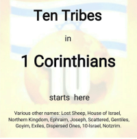 Amazon, Books, and Future: Ten Tribes  in  1 Corinthians  starts here  Various other names: Lost Sheep, House of Israel,  Northern Kingdom, Ephraim, Joseph, Scattered, Gentiles,  Goyim, Exiles, Dispersed Ones, 10-lsrael, Notzrim. . ⬇ ➡Beloved friend, the 5 PICS ATTACHED will change your life forever, please scroll attachments. . 👉FREE: all Bible verses on the Ten Tribes explained in this gallery. 👉FREE Hebrew - Jewish - Messianic music and videos at www.hrti.co.za-shop 👉For my PDF format books ($2.50): www.hrti.co.za-shop You can also view them here @christianfamilyofisrael 👉For my books at Amazon ($2,99), please find the link in my bio or search PROF (DR) WA LIEBENBERG at Amazon. 👉All my books are displayed here @christianfamilyofisrael – FREE Amazon Kindle books from time to time. 👉 Join @commonwealthofisrael . ➡Do you know that 'Notzrim' is the modern Hebrew word for CHRISTIANS. ➡Jeremiah (31:6) states EPHRAIM, who is the TEN TRIBE 'HOUSE OF ISRAEL', would be called 'Notzrim' in the future according to prophecy. ➡The root of the Hebrew word Notzrim means 'Watchmen' as penned in this verse. ➡The word translated as 'Watchmen', does NOT apply to the House of Judah, ONLY to Ephraim, who is the 'House of Israel'. ➡Jeremiah was in fact prophesying that the TEN TRIBES in the latter times WOULD BE CHRISTIANS, and as such would be Judah's ALLY, exactly as beloved President Trump is doing now, and not Judah's adversary! ➡This is what this page is all about and how Yeshua is the epicentre of it all. . . . . . ephraim lostsheep parthians scythians hebrewschool losttribes jewishteens losttentribesofisrael messianic bibleschool yahweh yeshua chosen yahuah angelsong222 biblestudy redeemed saved christianlife bibleverseoftheday jesús truths biblequote jesuscalling jesusfreak jesusislord prayfortheworld praisegod spiritualwarfare jesuslovesyou
