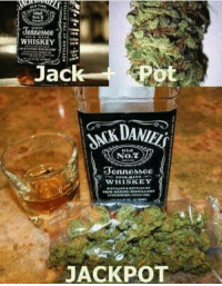 Memes, Tennessee, and 🤖: Tennessee  Jac  No.2  Tennesse  WHISKEY  JACKPOT