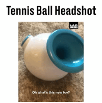 BOOM! Headshot! 😂: Tennis Ball Headshot  LAD  BIBLE  Oh what's this new toy? BOOM! Headshot! 😂