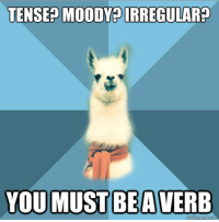 "Meme, Blue, and Text: TENSE? MOODY IRREGULAR  YOU MUST BEAVERB <p><strong>Nobody&rsquo;s Perfect</strong></p> <p>[Picture: Background: 8-piece pie-style color split with alternating shades of blue. Foreground: Linguist Llama meme, a white llama facing forward, wearing a red scarf. Top text: ""Tense? Moody? Irregular?"" Bottom text: ""You must be a verb""]</p>"