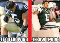 Facebook, Meme, and Nfl: TEO TEBOWING TEBONTEOING  Brought By: Facebook.com/NFL Memea  Wha  OUMeme com These two.. Credit: Travis Fetchko  http://whatdoumeme.com/meme/mtk8ft