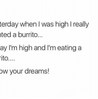 WeedHumor PSA! 😎: terday when was high l really  ted a burrito...  ay I'm high and I'm eating a  ito....  ow your dreams! WeedHumor PSA! 😎